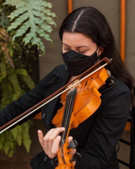 Serenata em Curitiba com violino